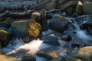 Photograph from  Grindleford and Padley Gorge
